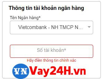 Điền thẻ ngân hàng khi vay tiền moneycat